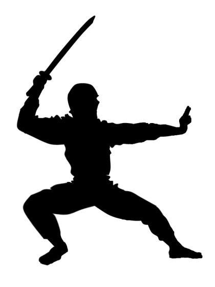 ninja_by_mspowell